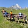 Montagna con bambini: il Monviso in groppa ad un asino