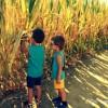 15 cose da fare con i bimbi se si resta in città d'estate