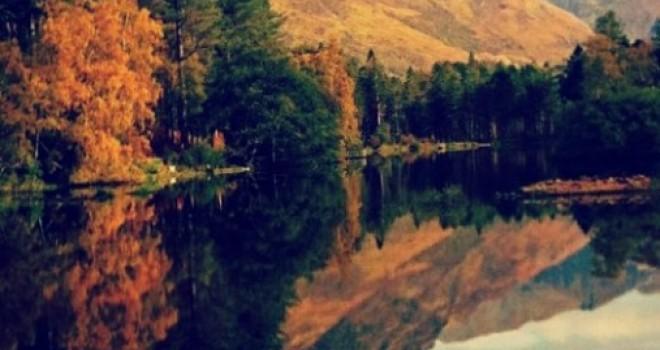 Dove andare in autunno con bambini: il foliage in Italia