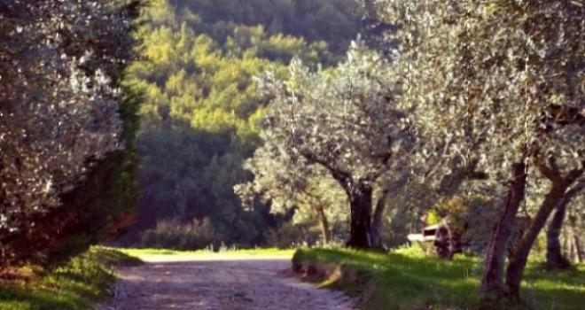 Spoleto e dintorni: un agriturismo che sa di casa