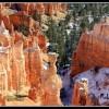 Il Bryce Canyon: colori indimenticabili, per grandi e piccini