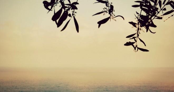 Un angolo di paradiso a Portofino: agririfugio I Molini
