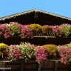 Hotel Ancora Predazzo: un albergo per famiglie in Val di Fiemme