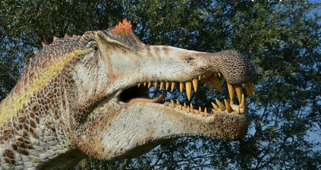 Alle Vallette di Ostellato tra dinosauri e i giganti dell'Era Glaciale