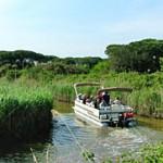 Autunno nel Delta del Po: escursioni in barca