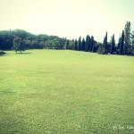 Passeggiata al Parco Sigurtà