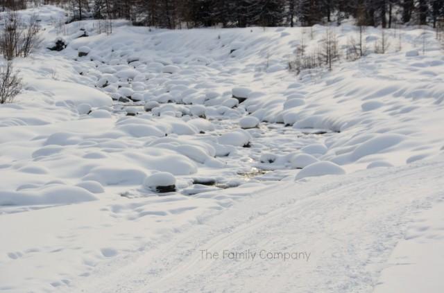paesaggio ghiacciaio Morteratsch 1