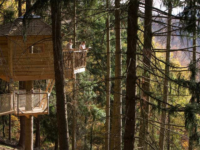 Cabanes als arbres, Treehouse in Catalonia. Credits: Cabanes als arbres