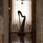 Caccia al Tesoro in Villa Palladiana