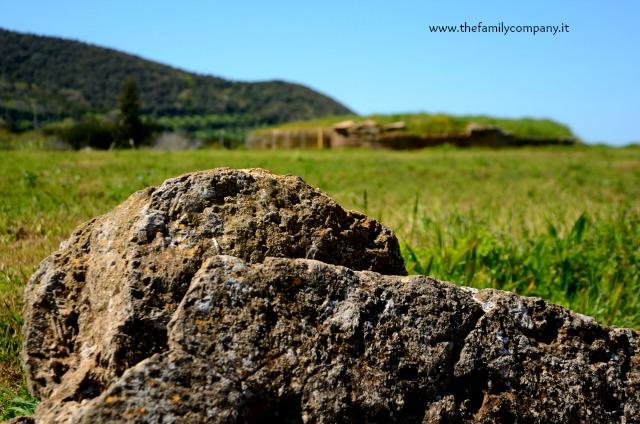 Tomba etrusca populonia baratti