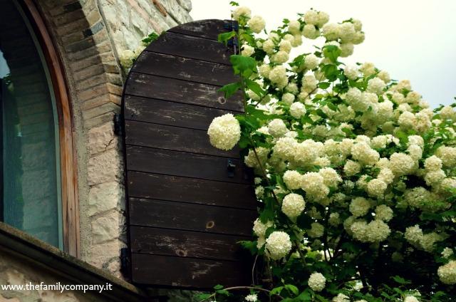 san settimio finestra fiorita