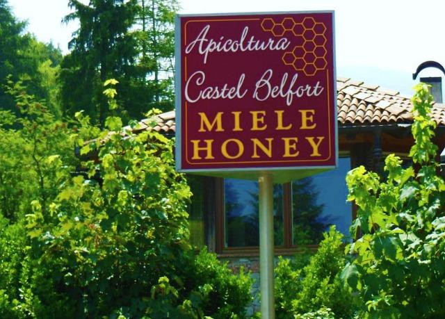apicoltura insegna