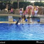 Costa Azzurra in camper: Marineland e dintorni