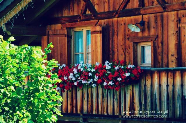 Val di Non Pineta Hotels 8