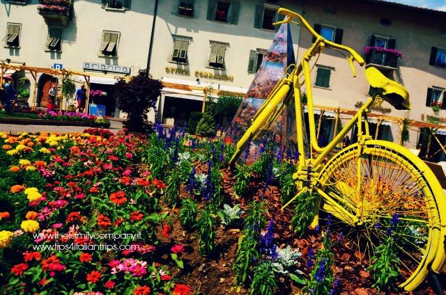 bici e fiori cles
