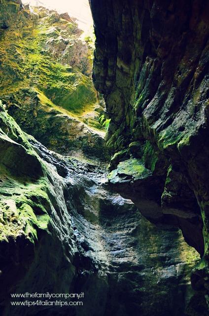 canyon rio sass 2