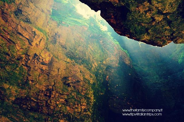 canyon rio sass 5