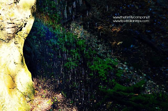 canyon rio sass 9 arcobaleno