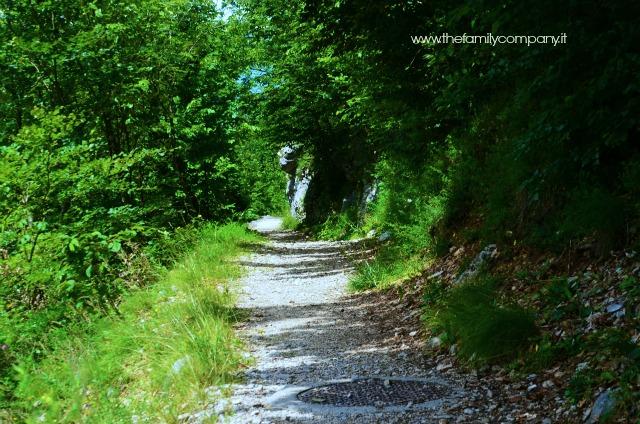 sentiero parco