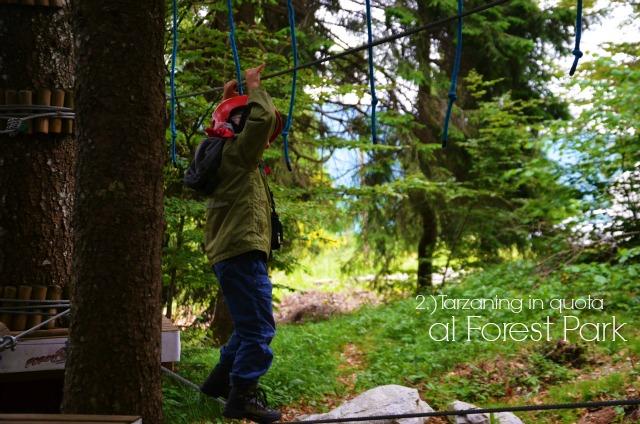 tarzaning forest park titolo