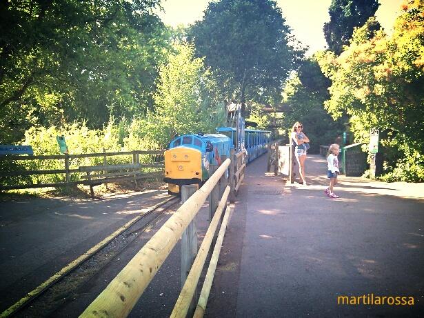 Devon il trenino dello zoo di Paignton