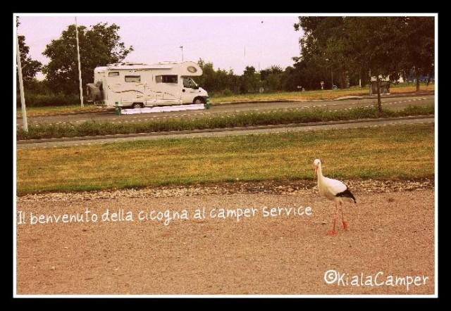Il benvenuti della cicogna