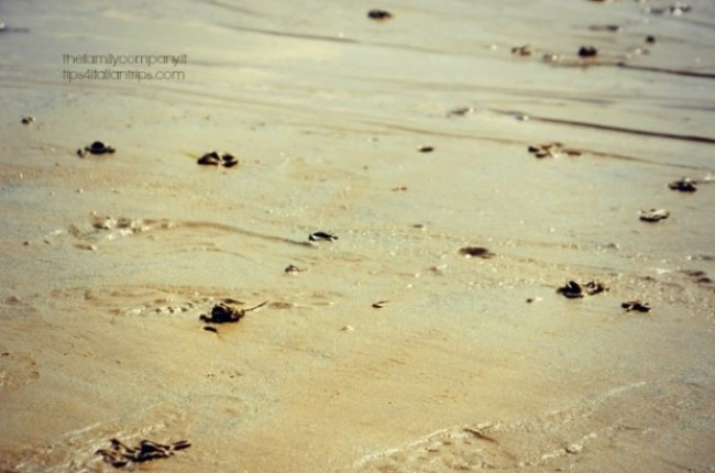 sabbia bagnata saint malo