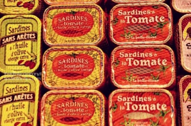 sardine saint malo