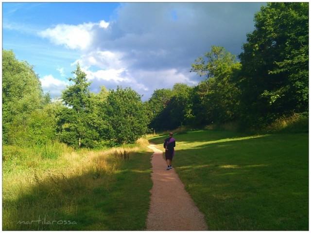 sentiero Cockington park