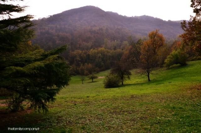 castello gropparello e parco delle fiabe
