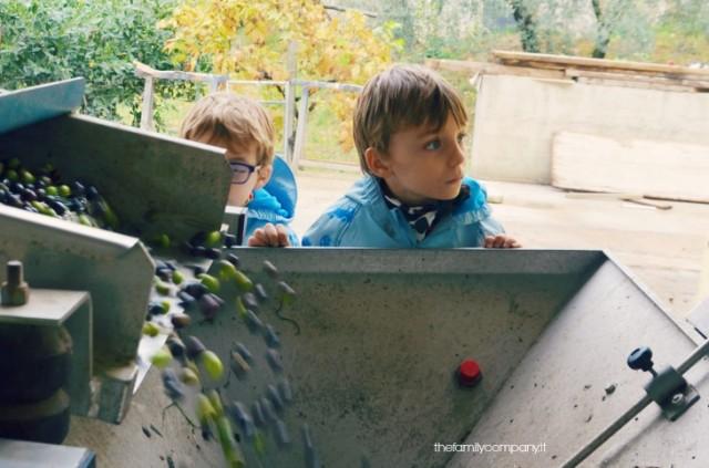 weekend in umbria con bambini frantoi aperti visita frantoio ricci
