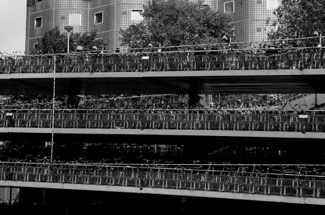 Di fatto, Amsterdam è un insieme di piccole isole collegate tra di loro da una miriade di ponti. Non è una sorpresa, dunque, che le barche sono un mezzo di trasporto molto utilizzato. Ed osservare la città dai canali vi permette di godere di un punto di vista speciale. Oltre ai tour organizzati, ci sono anche barche attrezzate con bar e ristoranti. In alternativa, potete utilizzare il Canal Bus, che effettua la sua corsa percorrendo i principali canali di Amsterdam, con tre itinerari diversi. Le fermate principali sono: di fronte la Stazione Centrale, nei pressi della casa di Anna Frank, Leidseplein, Herengracht. Partenze ogni 40 minuti dalle 09:50 fino al 19:25, con 14 fermate davanti alle principali attrazioni turistiche, musei e negozi. www.canal.nl