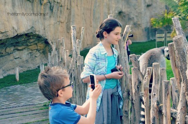 valencia con bambini, bioparc