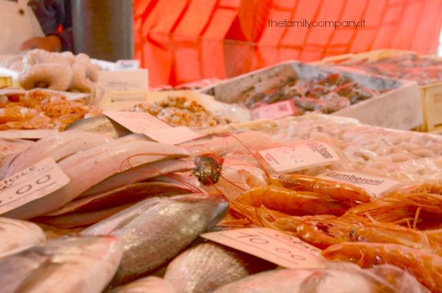 chioggia mercato del pesce