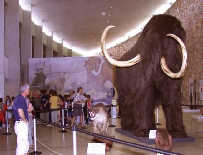 museo preistorico quinson