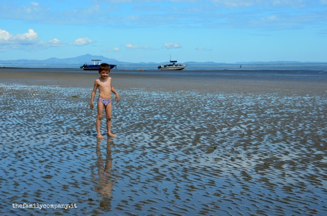palm beach 8