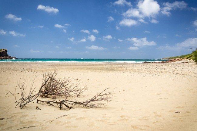 Carlofore spiaggia le calette