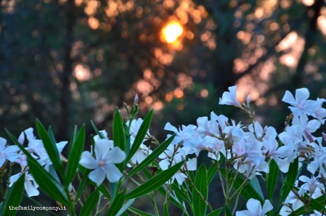 glamping tramonto
