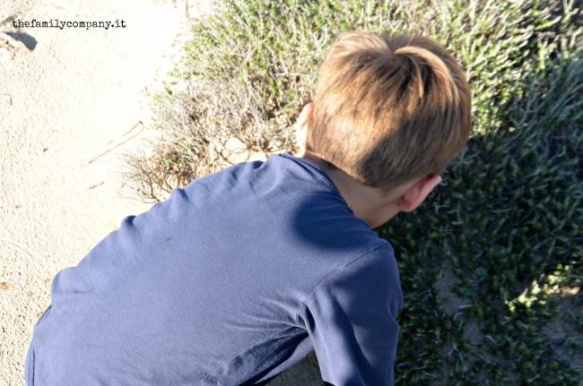 dune campomarino