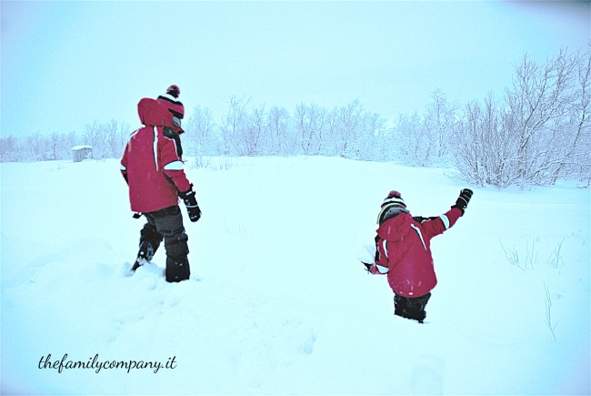 lapponia-svedese-neve