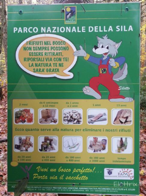 parco nazionale della sila con bambini