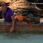 Acquario Sotto Le Stelle: visita serale all'Acquario di Genova con apericena per famiglie