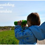 Bird Watching con bambini
