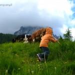 Montagna per bambini: gli gnomi della Val di Zoldo