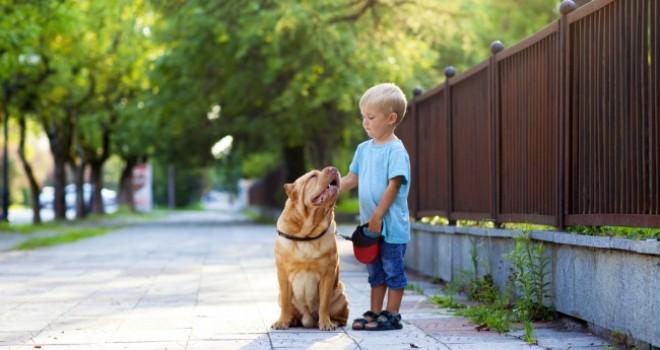 Crescere con un pet: evento per bambini a Milano