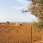 Puglia: gravine e masserie