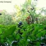 Luoghi da sogno: un resort a Bali