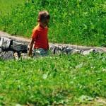 Vacanze con bambini in Val di Non: mini guida