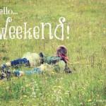 Cosa fare con i bambini nel weekend [4-6 ottobre]