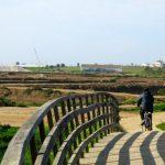 Algarve Occidentale con i bambini: da Faro a Vila Real de Santo Antonio